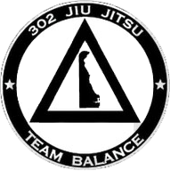 Welcome to 302 BJJ